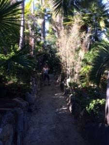 walking Del Mar