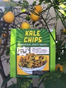 Kale Chips in lemon tree